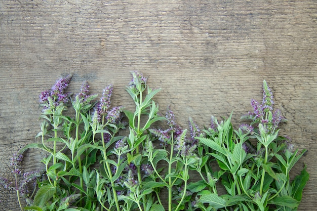 Blühende pfefferminze des krauts auf einem hölzernen hintergrund. heilkräuter. vintage ländlichen landhausstil. flach liegen