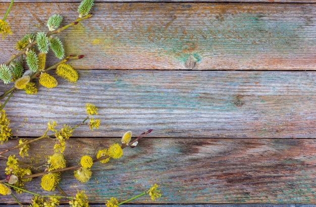 Blühende weidenzweige und hartriegel auf einer alten holzoberfläche