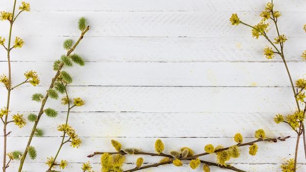 Blühende weidenzweige und hartriegel auf einer alten weißen holzoberfläche