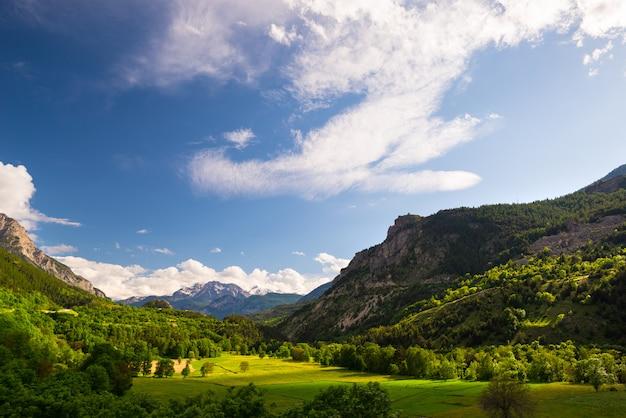 Blühende wiese idyllische berglandschaft mit schneebedeckten bergkette ecrins massif gebirgszug