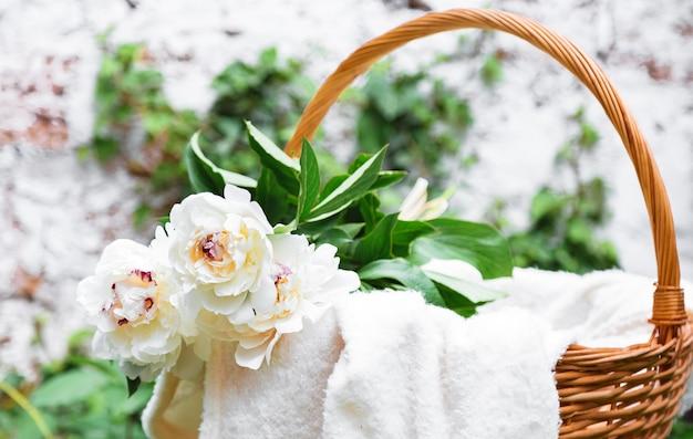 Blühender blumenstrauß der weißen pfingstrosen im hölzernen picknickkorb auf weißem plaid. picknick und romantischer dattelkorb mit frühlingsblumen draußen.