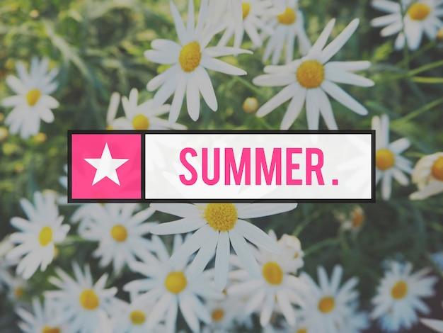 Blühender botanischer blumengarten natur sommer