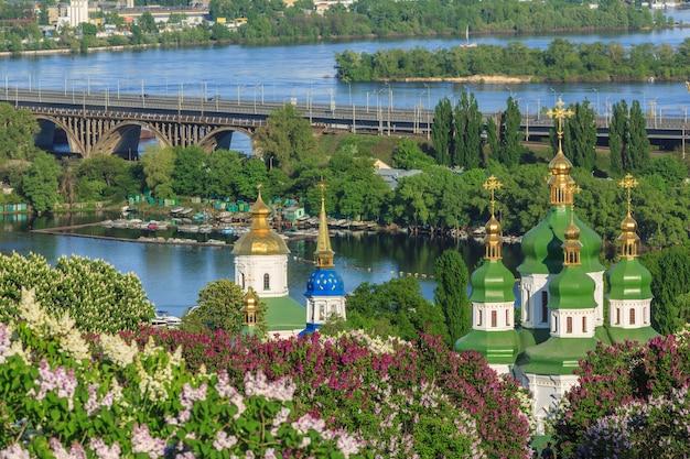 Blühender flieder im botanischen garten kiew ukraine