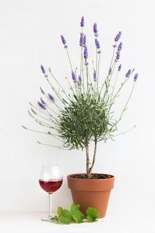 Blühender lavendel im provenzalischen interieur.