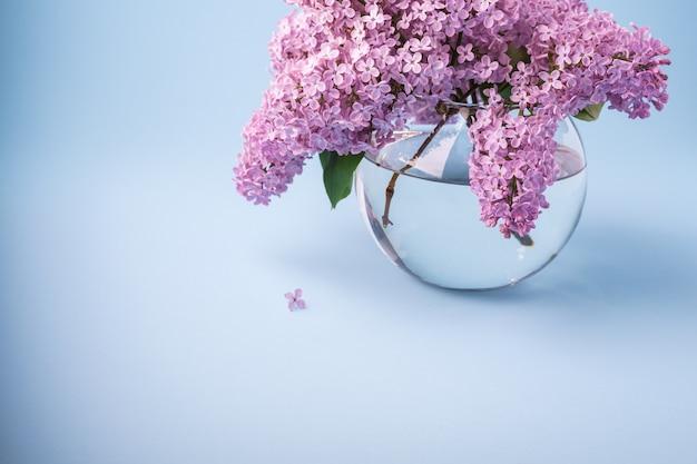Blühender lila blumenstrauß im transparenten vase des bereichs auf blauem hintergrund mit weniger blume