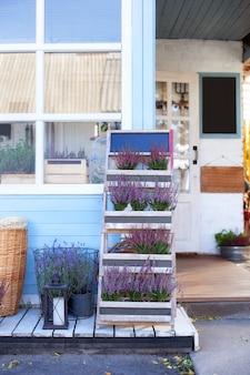 Blühendes heidekraut, weidenkörbe und gartengerät im hinterhofhaus im sommer. dekor terrasse des landhauses. lavendel in töpfen