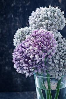 Blüht zwiebel auf altem hölzernem