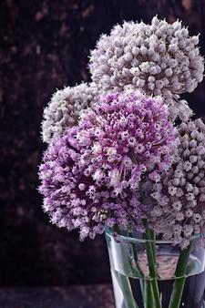 Blüht zwiebel auf altem holz