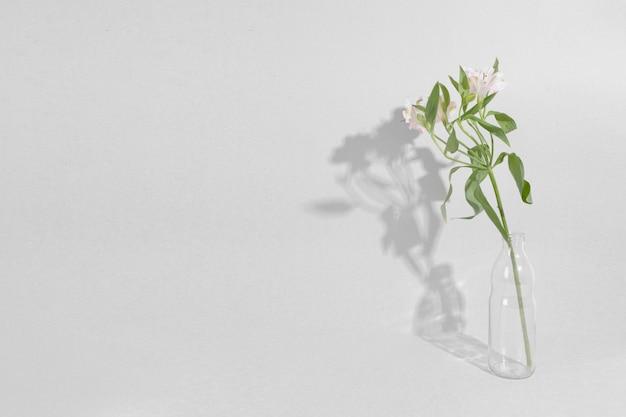 Blüten in der vase auf dem tisch