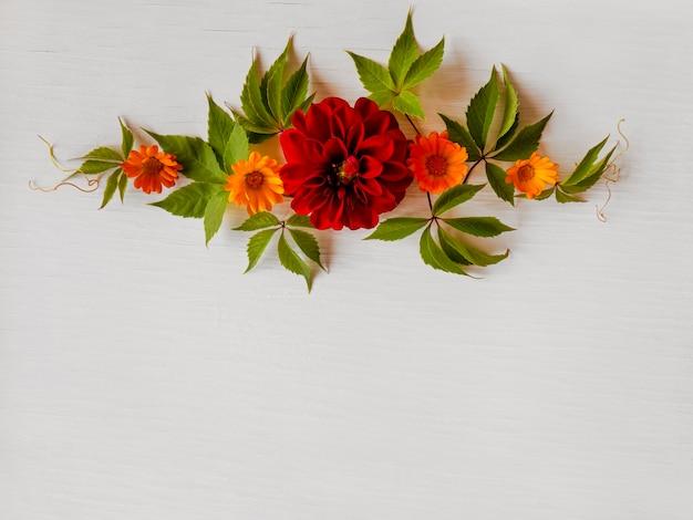 Blüten von kamille und dahlie. blumenfeiertagskomposition mit blumen
