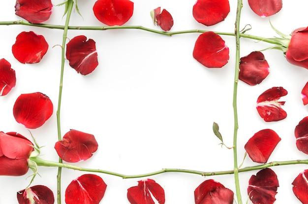 Blütenblätter aus roten rosen
