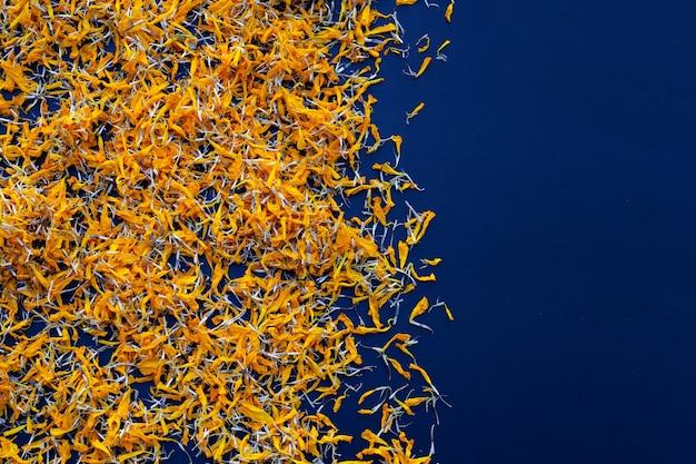 Blütenblätter der ringelblume blühen auf blau