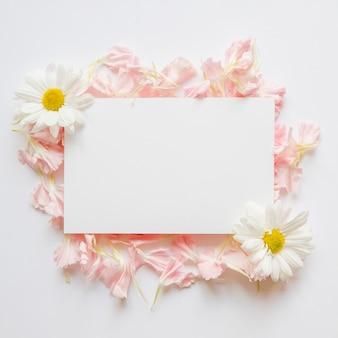 Blütenblätter und chamomiles in der nähe von papierblatt