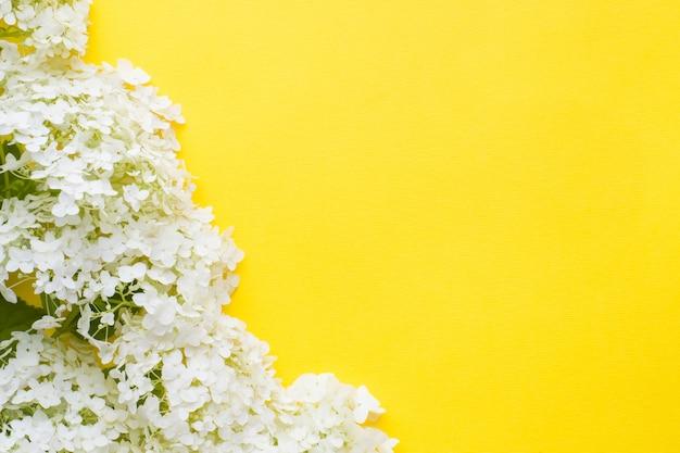 Blume der weißen hortensie auf einem gelben hintergrund. sommerkonzept ..