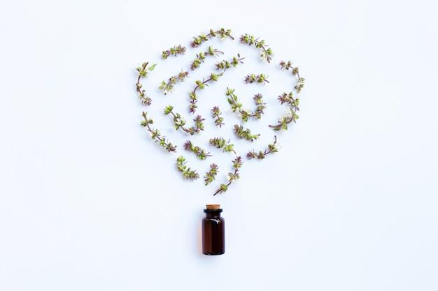 Blume des süßen basilikums und urlaub mit tropfenflasche kraut des ätherischen öls auf weißem hintergrund