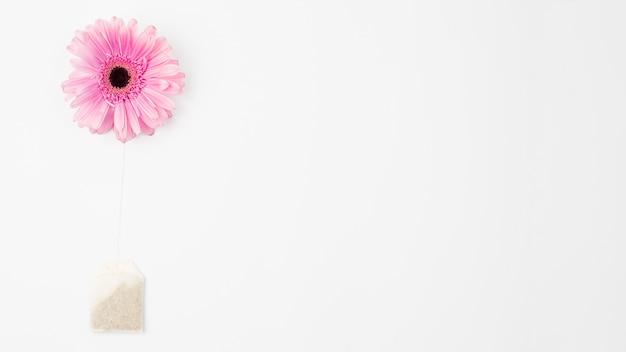 Blume und teebeutel