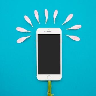 Blume vom smartphone und von den blumenblättern