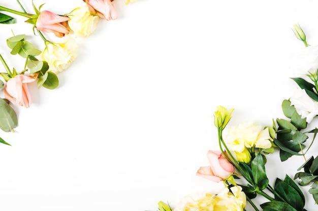 Blume von rosen auf weißem hintergrund