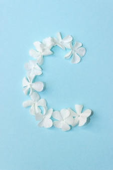 Blumen-alphabet - c. brief aus lebenden blumen auf hellblauem hintergrund.