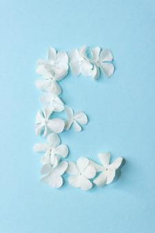 Blumen-alphabet - e. brief aus lebenden blumen auf hellblauem hintergrund.