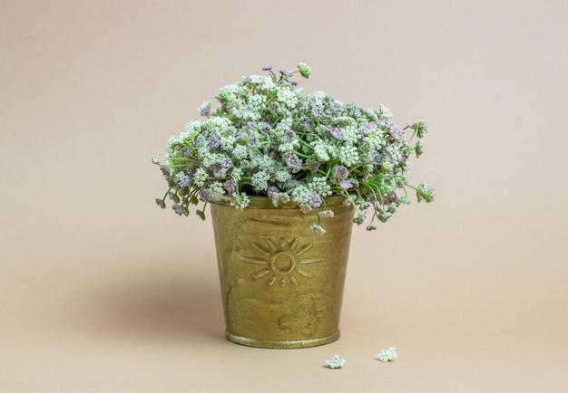 Blumen auf einem braunen hintergrund