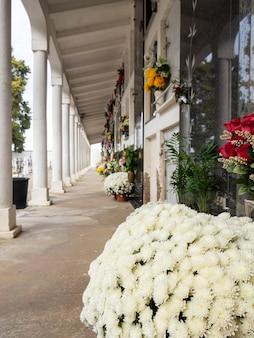 Blumen auf einem grabstein auf einem friedhof mit vielen grabsteinen im hintergrund tag der toten