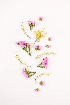 Blumen auf einem weißen hintergrund - hallo frühling und hallo sommer