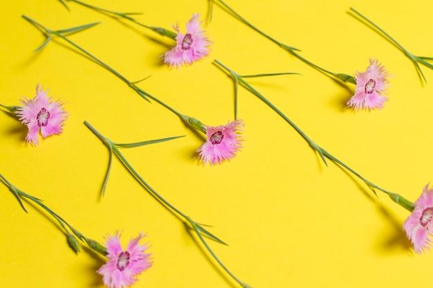 Blumen auf gelb