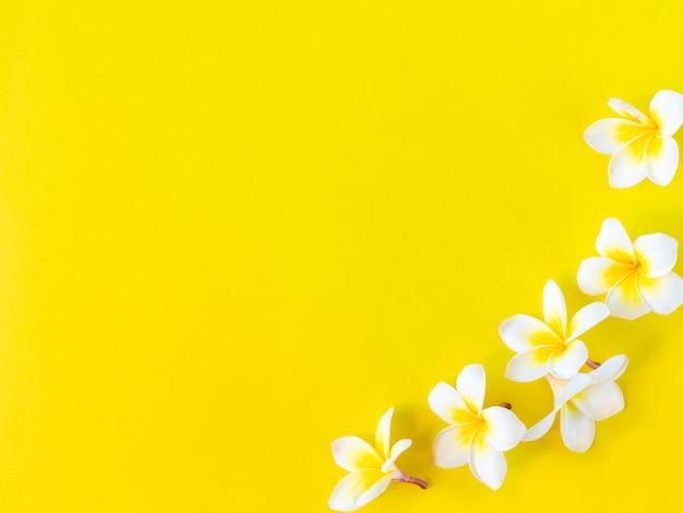 Blumen auf gelbem hintergrund