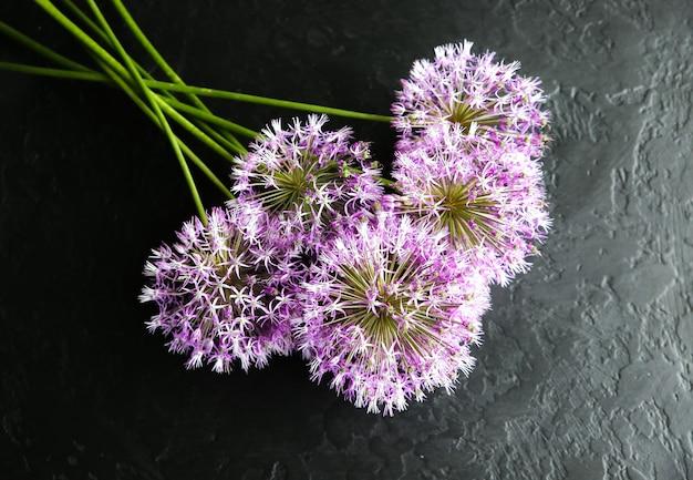 Blumen auf schwarzem hintergrund. allium-bouquet. perfekte flache lage mit blütenblättern. glückliche mütter feiertagspostkarte. gruß zum internationalen frauentag. geburtstagsidee für werbung. einladung.