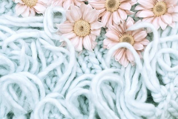 Blumen aus rosa chrysanthemen liegen auf einem blauen teppich mit einem rand aus merinowolle.