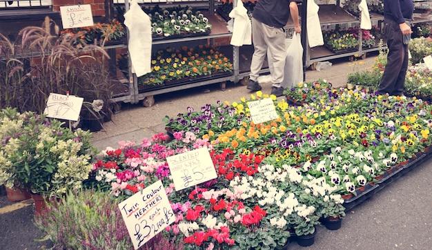 Blumen-blühen-vibrierendes dekorations-bündel