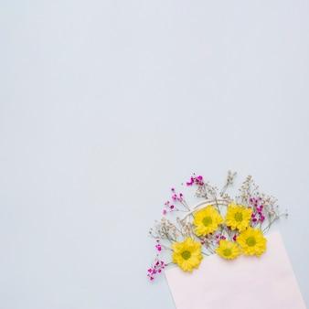 Blumen, die aus der rosa papiertüte gegen weißen hintergrund herauskommen