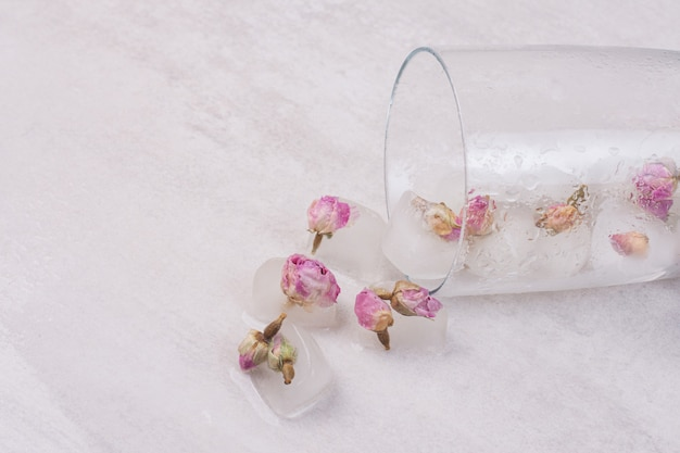 Blumen gefroren in eiswürfeln auf weißer oberfläche.
