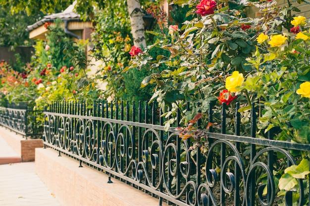 Blumen hinter einem zaun vor dem haus