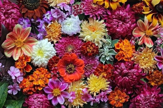 Blumen hintergrund. ein hintergrund von kultivierten blumen.