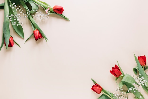 Blumen hintergrund