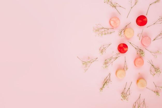 Blumen in der nähe von frischen makronen