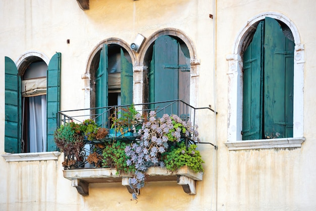Blumen in einer schachtel am fenster. venedig, italien