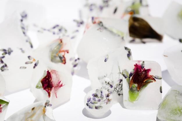 Blumen in eiswürfeln und kugeln
