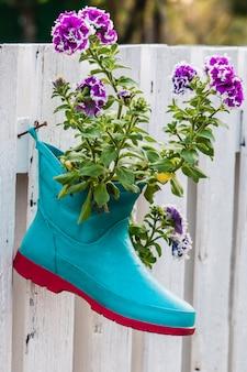 Blumen in stiefeln