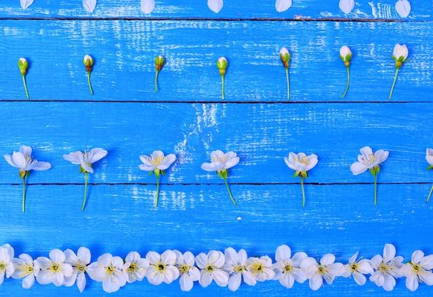 Blumen mit einem zweig von kirschen