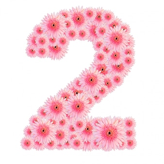 Blumen nummer