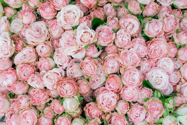 Blumen schöner strauß