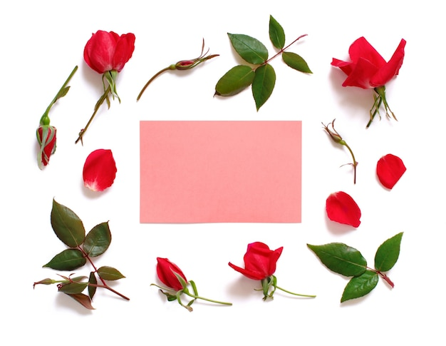 Blumen und blätter auf einer weißen hintergrundoberansicht