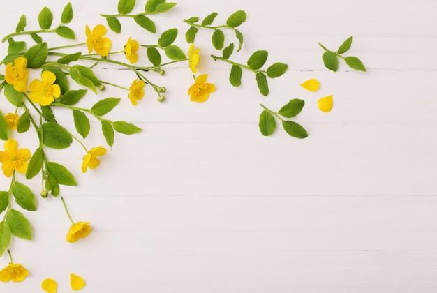 Blumen und blätter auf weißem hölzernem hintergrund