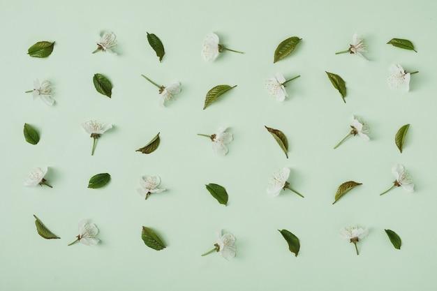 Blumen und blätter der süßkirsche auf einem grünen hintergrund, der in ein muster gelegt wird. ein romantisches bild für zärtlichkeit und zerbrechlichkeit.