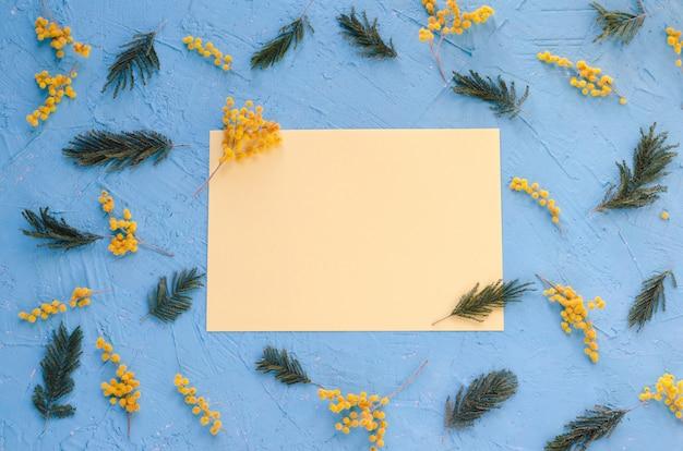 Blumen und branchesof akazie auf blauem hintergrund. karte zum schreiben.