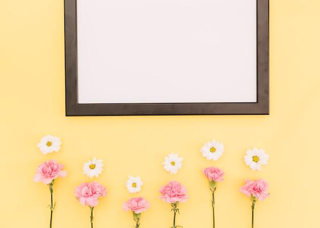 Blumen und einen rahmen