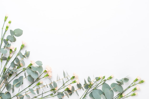 Blumen und eukaaliptus zusammensetzung. muster aus verschiedenen bunten blumen auf weißem hintergrund. flach lag stiil leben.